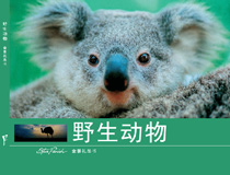 Panoramic Souvenir Gift Book of Australia: Wildlife [ Chinese Edition w/ Steve Parish Photography ]